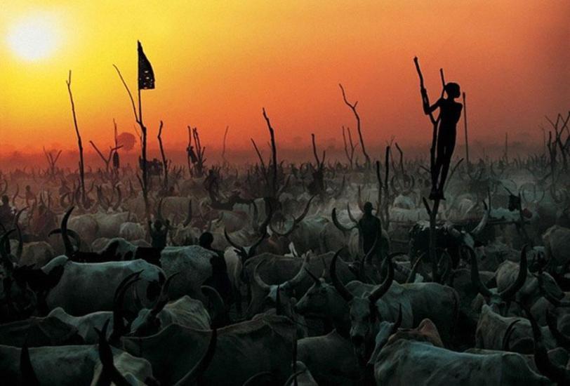 dinka-tribe-sudan-africa-carol-beckwith-angela-fisher-13